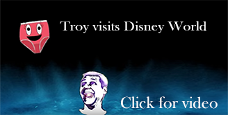 Troy visits Disney