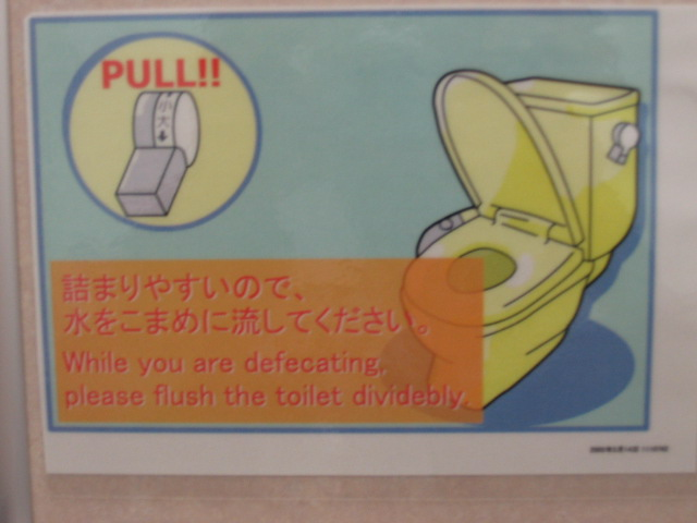 Japanese toilets can't handle American poop